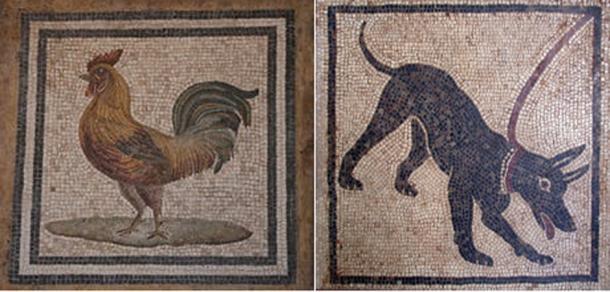 Dog mosaic, cockerel mosaic, (Public Domain)