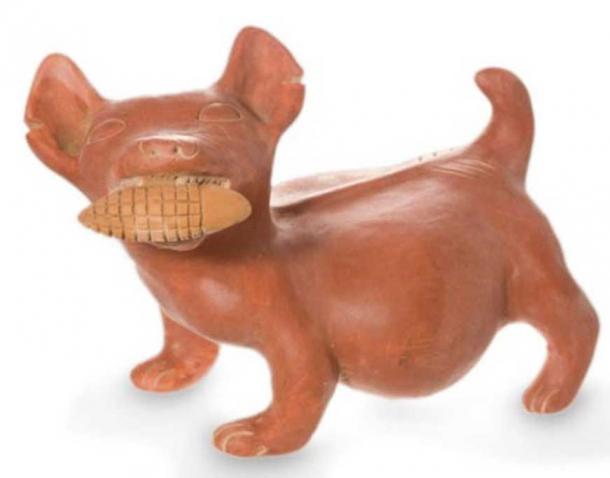 Dog with a corn cob, replica of a ceramic from Colima, Mexico.