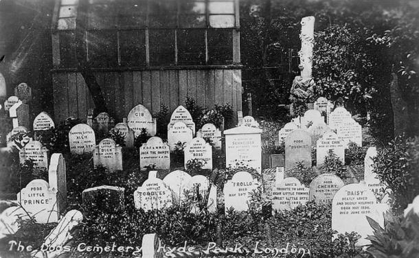 The Dog's Cemetery at Victoria Gate in Hyde Park contains over 300 graves of dogs, cats, birds and a monkey.