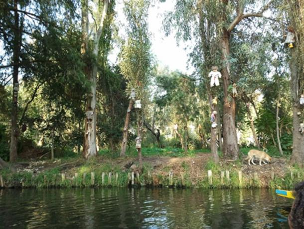 Dolls seen from the lake at the Island of Dolls. (Amrithraj / CC BY-SA 3.0)