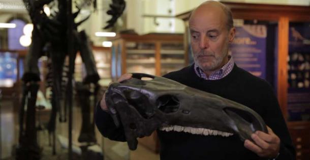 Dr. David Norman showing a skull of an Iguanadon.