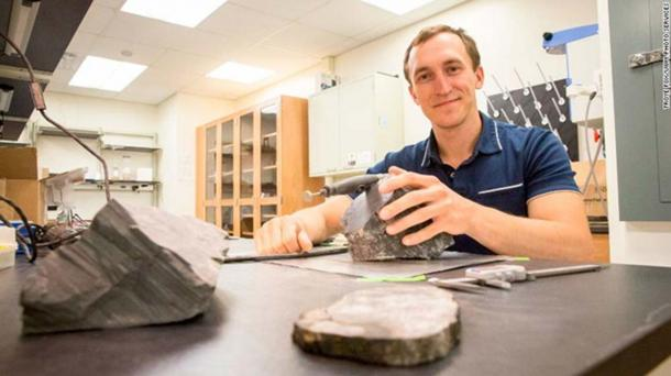 Dr. Gulbranson studies tree rings for clues about how these trees grew in polar ecosystems.