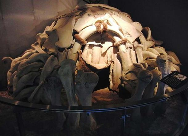 Dwelling made from Mammoth Bones (reconstruction).