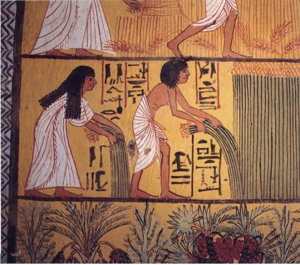 Egyptian peasants harvesting papyrus, mural painting in Deir el-Medina (early Ramesside Period)