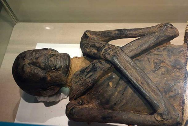 Egyptian mummy exhibit, Albany Institute of History and Art