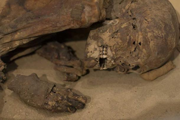 The mummy dates from Egyptian prehistory, before the classic Pharaonic period. (Image: ©Fotolia)
