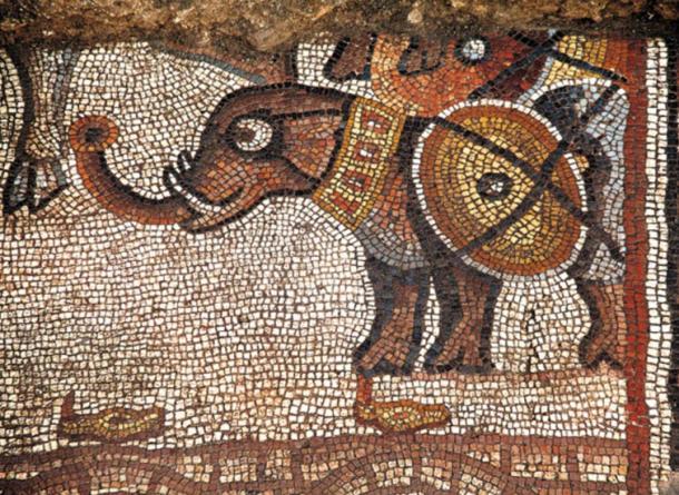 """A """"Cartoonish"""" Elephant Mosaic, Huqoq, Galilee region, Israel."""