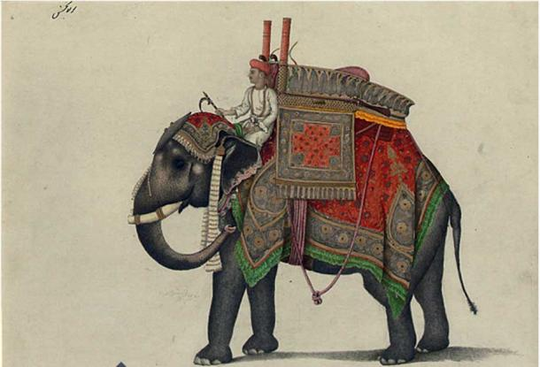 Elephant and driver, probably from the Mughal Emperor's stable with a hunting howdar, including pistol, bows and a rifle inscribed 'Maula Bakhsh' (in Persian, upper left) and further inscribed (centre left) pencil and watercolour heightened with bodycolour and gold. (Public Domain)