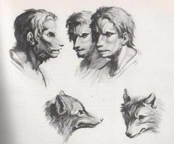 Engravings of wolves and wolf-men.