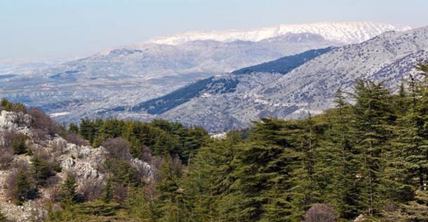 Enkidu told Gilgamesh about his adventures in the mountains. (diak / Adobe)