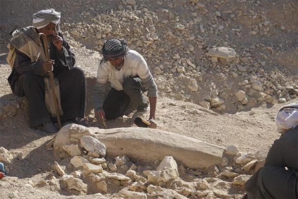 Examining the coffin at the Dra Abu el-Naga site in Luxor, Egypt. (CSIC)