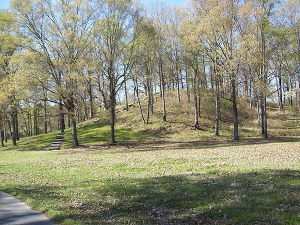 Example of a mound: Mound A or Bird Mound before the trees were removed at Poverty Point site, Louisiana, USA. A prehistoric site of various earthworks, including ring walls and mounds. (CC BY-SA 2.0)