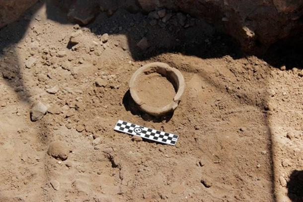 Example of the many pottery pieces found by the ABR dig (Credit: ABR)