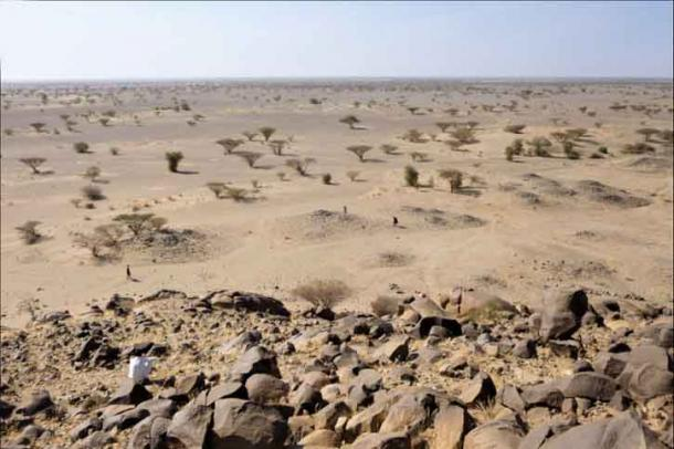 An example of foot tumuli in the Kassala region of eastern Sudan, which are simple stone-high structures that were widespread throughout African prehistory and history.  (Costanzo et al. / PLOS ONE)