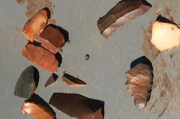 Examples of ancient stone tools uncovered on an archaeological dig in the Hamersley Ranges. (ABC News)