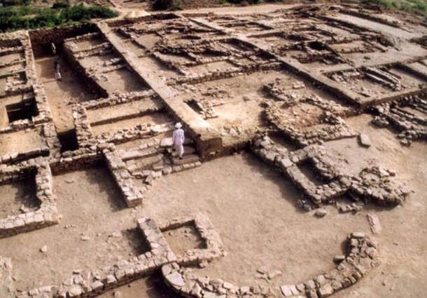 Excavation on a housing area at Dholavira.
