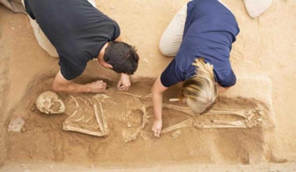 Excavation of the Philistine Cemetery at Ashkelon. Photographer: Melissa Aja. Courtesy Leon Levy Expedition to Ashkelon