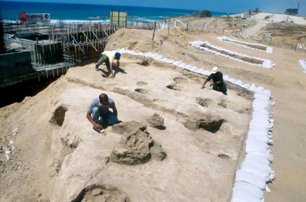 An Excavation taking place in Ashkelon, Israel
