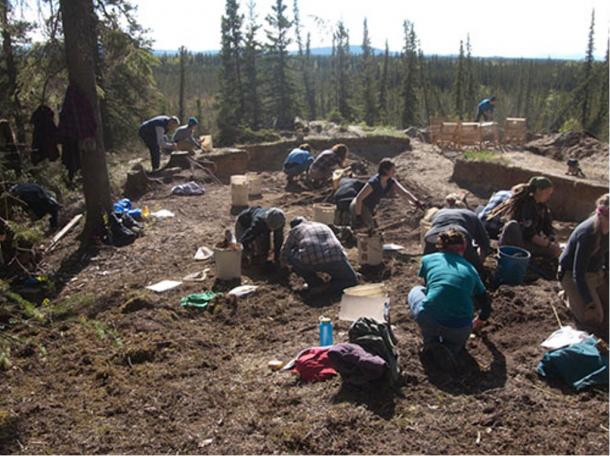 Excavationists work at the Mead site in Alaska where 12,300-year-old pendants have been found.