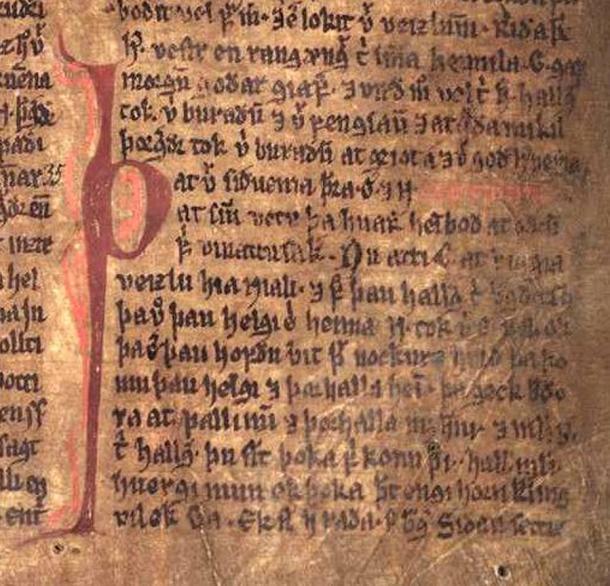 Excerpt from Njáls saga in the Möðruvallabók (AM 132 folio 13r) circa 1350.