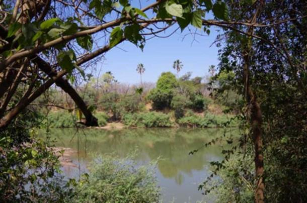 Exploring forests by the edges of the Gambia river system. © Eleanor Scerri, Author provided