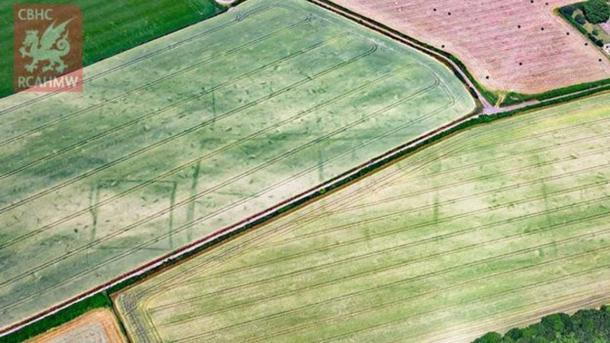 Extensive crop marks of Trewen Roman farmstead or villa, Caerwent, Monmouthshire. (RCAHMW)