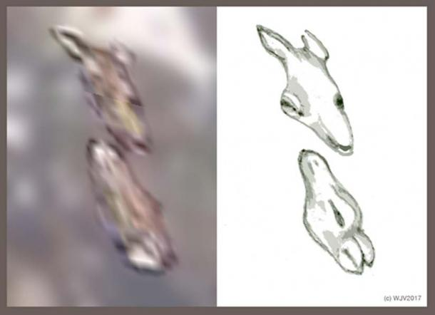 FIGURES 9 and 9a: Amongst the plethora of Antarctica imagery I have recorded each piece of imagery brought forth its own particular surprise. The two animals depicted in this exciting figure were no exception.