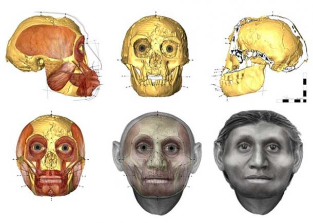 Facial approximation of 'the Hobbit' by Dr Susan Hayes. (University of Wollongong/AAP)