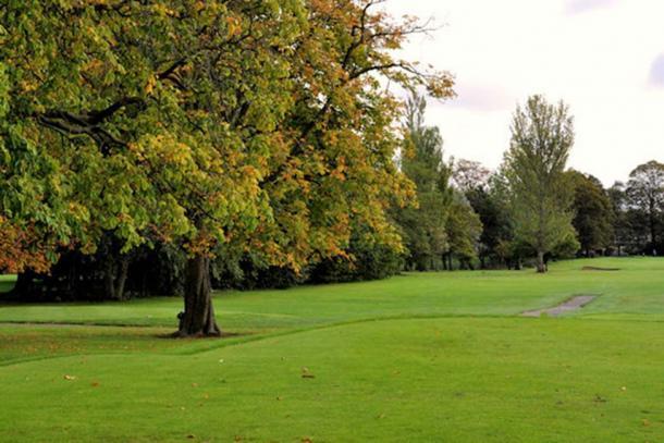 Fairy Tree at Ormeau Golf Club in Belfast, Ormeau, Northern Ireland. (Albert Bridge / CC BY-SA 2.0)