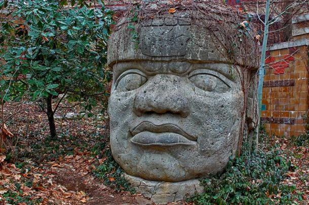 Famous stone head of the Olmec civilization