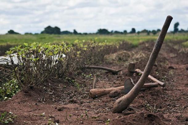Farm tools from modern Malawi