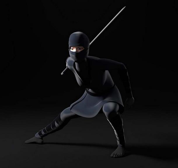 Female ninja 2.0.