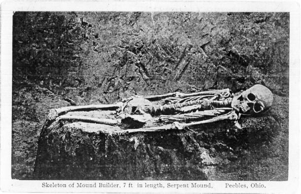 Figure 5: The 7 ft skeleton from Serpent Mound cut off at the knees. Courtesy of Jeffrey Wilson.