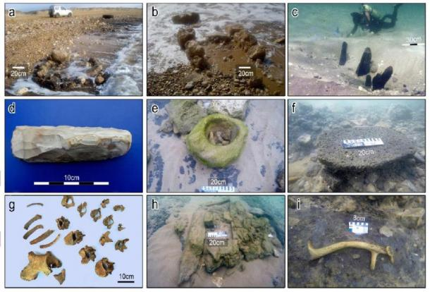 Finds from the Tel Hreiz: (a-b) exposure of stone-built features in shallow water, (c) wooden posts dug into the seabed, (d) bifacial flint adze, (e) in situ stone bowl made of sandstone, (f) in situ basalt grounding stone (scale = 20cm); (g) a burial, (h) suspected stone-built cist grave, and (i) antler of Mesopotamian fallow deer. (Images by E. Galili with the exception of Fig 3G by V. Eshed)