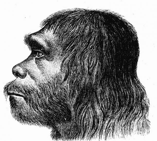First reconstruction of Neanderthal man – 1888. (Public Domain)