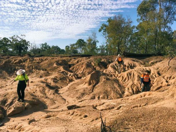 Fossils are found eroding out of the ancient flood plains of South Walker Creek. (Rochelle Lawrence, Queensland Museum)