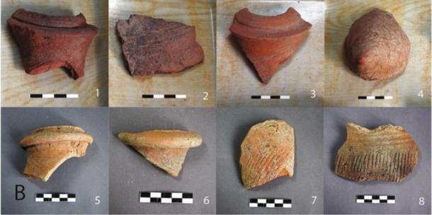 Fragments of amphorae found at the site in the 1960s and examined in the study. (Li Liu / Yongqiang Li / Jianxing Hou)
