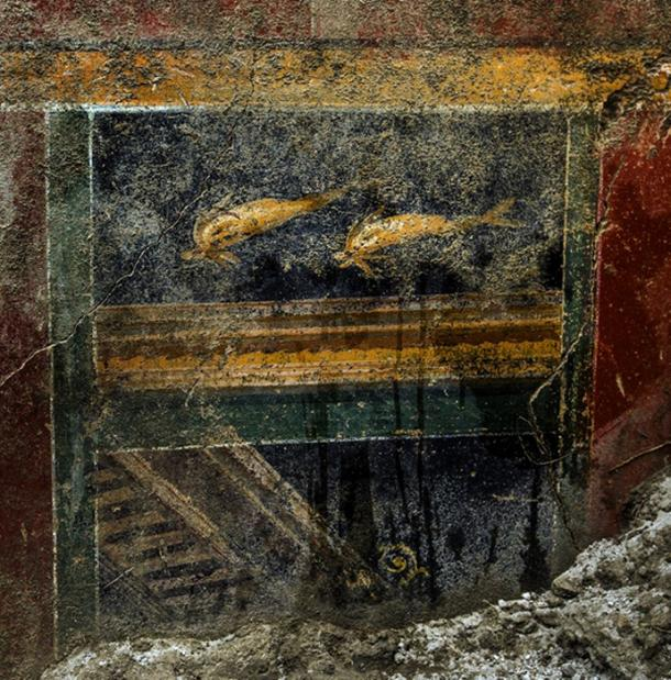 Fresco discovered at the 'Domus of Dolphins' last week. (Pompeii - Parco Archeologico)