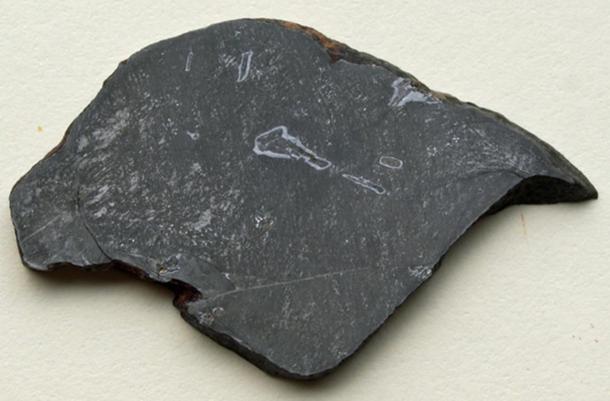 Slice of the Gebel Kamil Meteorite