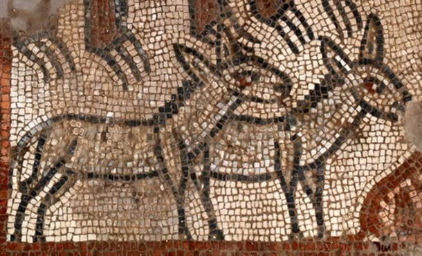 "Genesis 6:19: ""You are to bring into the ark two of all living creatures, male and female, to keep them alive with you."" This mosaic detail shows two donkeys to be led onto Noah's ark."