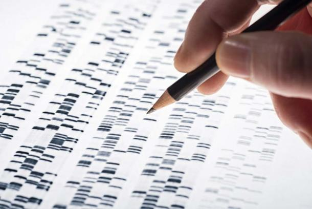 Genomes consist of hundreds of thousands of markers. (Image: Eisenhans / Adobe Stock)