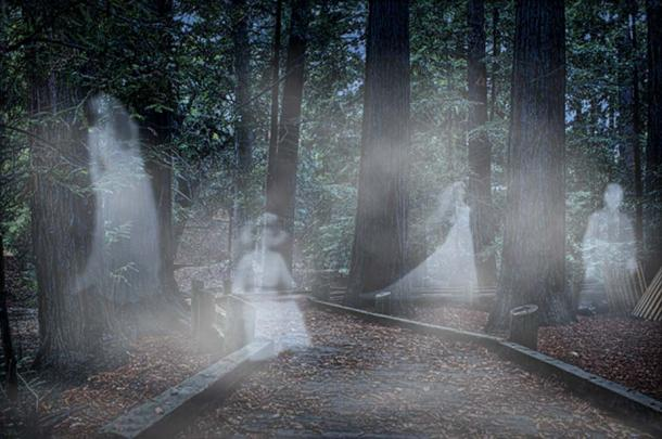 Ghosts in the woods.
