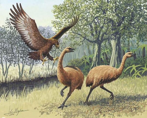 Giant Haast's eagle attacking New Zealand moa. (John Megahan/CC BY 2.5)