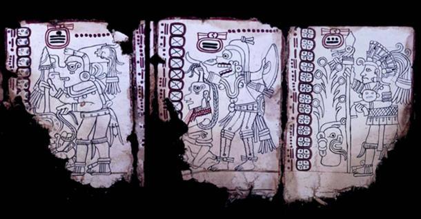 Grolier Codex, Page 4, Maya Grolier Codex, Page 6, Grolier Codex, Page 7