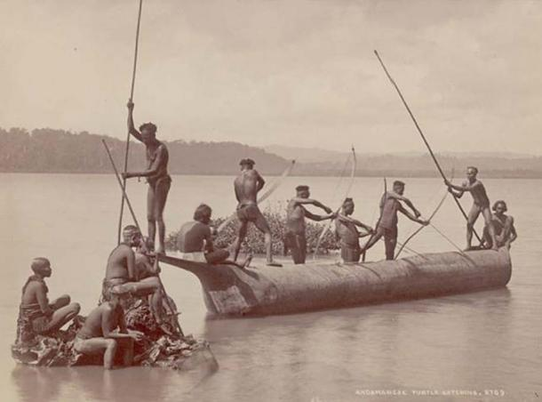 Group of Andaman Men and Women in Costume, Some Wearing Body Paint and with Bows and Arrows, Catching Turtles from Boat on Water. (Public Domain)