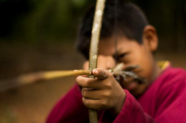 A Guarani child learns to hunt
