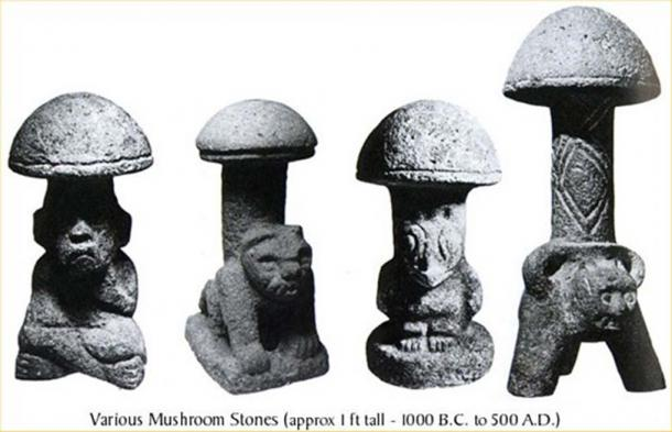 The significance of Guatemalan mushroom stones went undetected until connected with Spanish records of Mexican priests