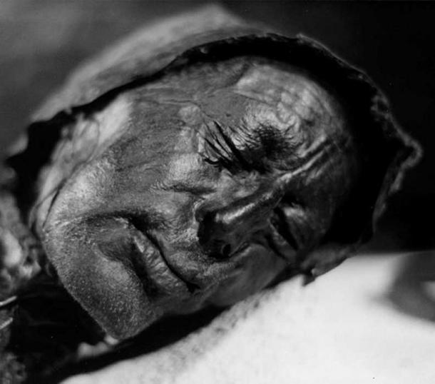 Head of bog body Tollund Man.
