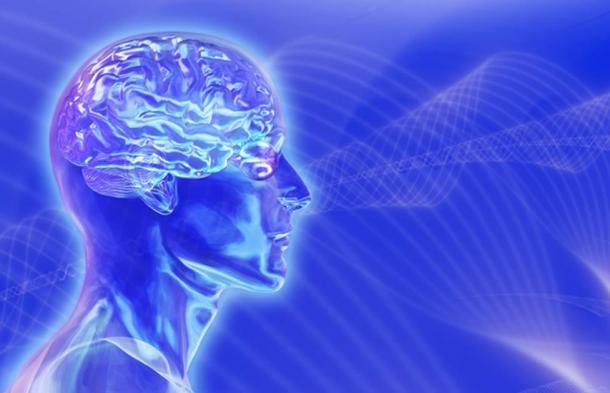 Head with brain on brainwaves background. (AlienCat / Adobe)