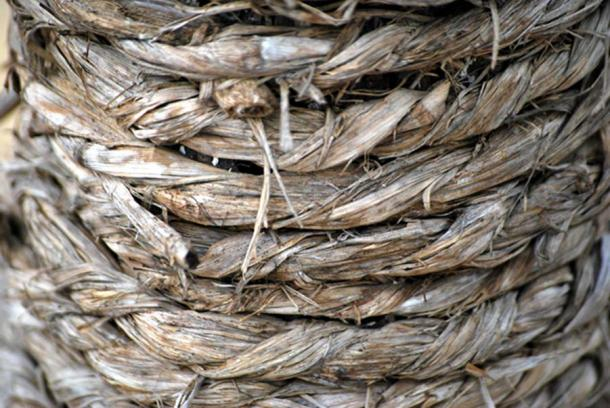 Hemp fibre (public domain)